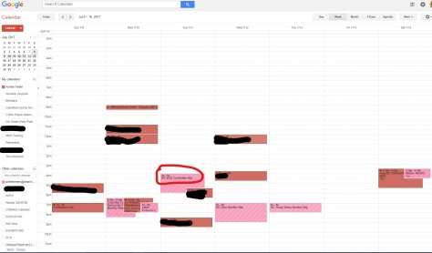Your Google Calendar After Highlighting PDR Events cropped touched up